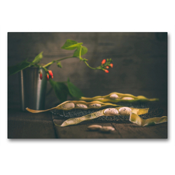 Premium Textil-Leinwand 90 x 60 cm Quer-Format Palbohnen | Wandbild, HD-Bild auf Keilrahmen, Fertigbild auf hochwertigem Vlies, Leinwanddruck von Regina Steudte