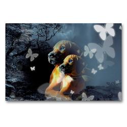 Premium Textil-Leinwand 90 x 60 cm Quer-Format Rhodesian Ridgeback in der Ruhe liegt die Kraft | Wandbild, HD-Bild auf Keilrahmen, Fertigbild auf hochwertigem Vlies, Leinwanddruck von Dagmar Behrens