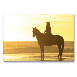 Premium Textil-Leinwand 90 x 60 cm Quer-Format Romantisch … Sonnenuntergang am Strand | Wandbild, HD-Bild auf Keilrahmen, Fertigbild auf hochwertigem Vlies, Leinwanddruck von Petra Eckerl Tierfotografie www.petraeckerl.com