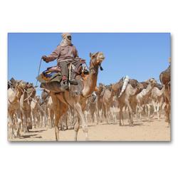 Premium Textil-Leinwand 90 x 60 cm Quer-Format Salzkarawane im Tschad | Wandbild, HD-Bild auf Keilrahmen, Fertigbild auf hochwertigem Vlies, Leinwanddruck von Knut Bormann