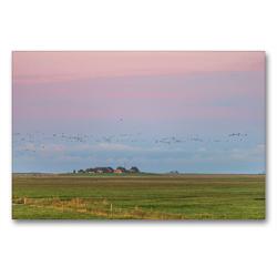 Premium Textil-Leinwand 90 x 60 cm Quer-Format Sonnenaufgang auf der Hallig Langeneß | Wandbild, HD-Bild auf Keilrahmen, Fertigbild auf hochwertigem Vlies, Leinwanddruck von Annett Mirsberger