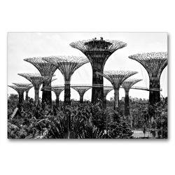 Premium Textil-Leinwand 90 x 60 cm Quer-Format Supertrees in Gardens by the Bay | Wandbild, HD-Bild auf Keilrahmen, Fertigbild auf hochwertigem Vlies, Leinwanddruck von Ralf Wittstock