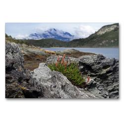 Premium Textil-Leinwand 90 x 60 cm Quer-Format Tierra del Fuego – Große Feuerlandinsel/Argentinien | Wandbild, HD-Bild auf Keilrahmen, Fertigbild auf hochwertigem Vlies, Leinwanddruck von Flori0