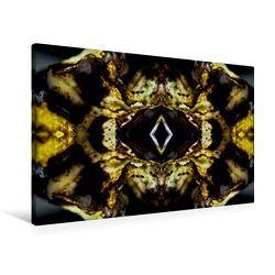 Premium Textil-Leinwand 90 x 60 cm Quer-Format Touho   Wandbild, HD-Bild auf Keilrahmen, Fertigbild auf hochwertigem Vlies, Leinwanddruck von NUPHO Nihat Uysal Photography von - Nihat Uysal Photography,  NUPHO