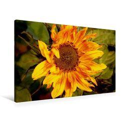 Premium Textil-Leinwand 90 x 60 cm Quer-Format Wilde Sonnenblume   Wandbild, HD-Bild auf Keilrahmen, Fertigbild auf hochwertigem Vlies, Leinwanddruck von Heike Hultsch von Hultsch,  Heike