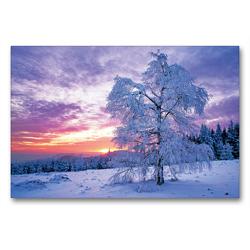 Premium Textil-Leinwand 90 x 60 cm Quer-Format Wintertraum im Schwarzwald | Wandbild, HD-Bild auf Keilrahmen, Fertigbild auf hochwertigem Vlies, Leinwanddruck von CALVENDO