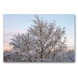 Premium Textil-Leinwand 90 x 60 cm Quer-Format Winterwald im Abendschein | Wandbild, HD-Bild auf Keilrahmen, Fertigbild auf hochwertigem Vlies, Leinwanddruck von kattobello