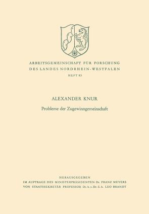 Probleme der Zugewinngemeinschaft von Knur,  Alexander