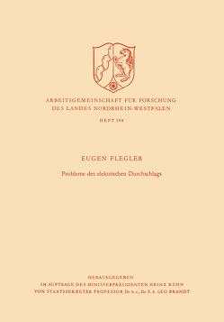Probleme des elektrischen Durchschlags von Flegler,  Eugen