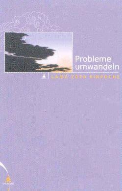 Probleme umwandeln von Cameron,  Alisa, Courtin,  Robina, Hildebrandt,  Gabriela, Wellnitz,  Claudia, Wetzel,  Sylvia, Zopa,  Thubten