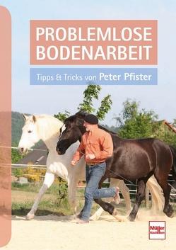 Problemlose Bodenarbeit von Pfister,  Peter