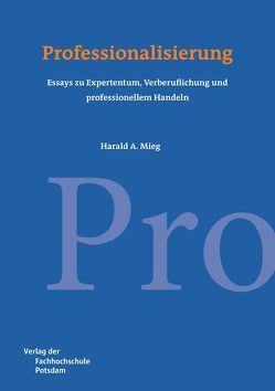 Professionalisierung von Mieg,  Harald