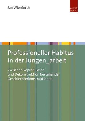 Professioneller Habitus in der Jungen_arbeit von Wienforth,  Jan