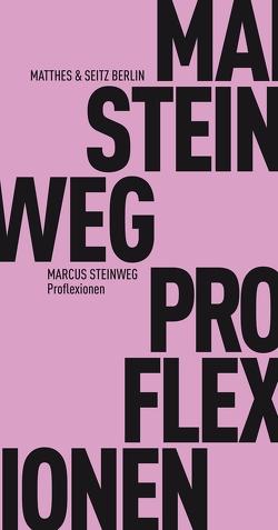 Proflexionen von Steinweg,  Marcus