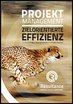 Projektmanagement Zielorientierte Effizienz