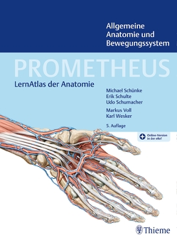 PROMETHEUS Allgemeine Anatomie und Bewegungssystem von Schulte,  Erik, Schumacher,  Udo, Schünke,  Michael