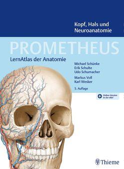PROMETHEUS Kopf, Hals und Neuroanatomie von Schulte,  Erik, Schumacher,  Udo, Schünke,  Michael