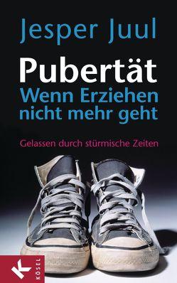 Pubertät – wenn Erziehen nicht mehr geht von Juul,  Jesper