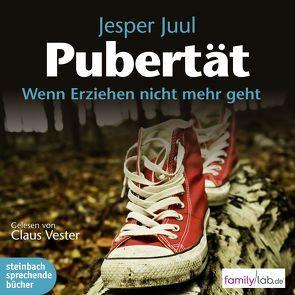 Pubertät von Juul,  Jesper, Vester,  Claus