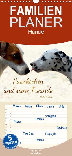 Pünktchen und seine Freunde – Familienplaner hoch (Wandkalender 2020 , 21 cm x 45 cm, hoch) von Hultsch,  Heike