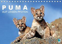 Puma: Auf leisen Pfoten (Tischkalender 2019 DIN A5 quer) von CALVENDO