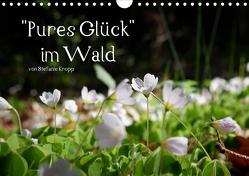 Pures Glück im Wald – Kalender 2020 (Wandkalender 2020 DIN A4 quer) von Kropp,  Stefanie