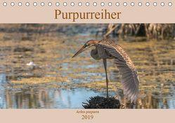 Purpurreiher (Tischkalender 2019 DIN A5 quer) von Köhn,  André