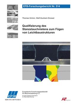 Qualifizierung des Stanzstauchnietens zum Fügen von Leichtbaustrukturen von Drossel,  Welf-Guntram, Grimm,  Thomas