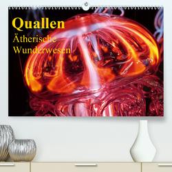 Quallen • Ätherische Wunderwesen (Premium, hochwertiger DIN A2 Wandkalender 2020, Kunstdruck in Hochglanz) von Stanzer,  Elisabeth