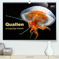 Quallen – einzigartige Wesen (Premium, hochwertiger DIN A2 Wandkalender 2021, Kunstdruck in Hochglanz) von Roder,  Peter