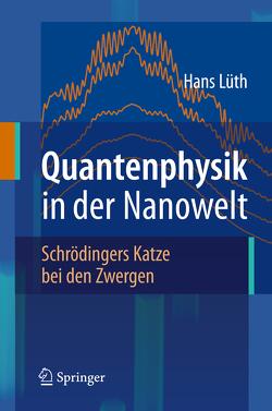 Quantenphysik in der Nanowelt von Lüth,  Hans