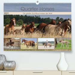 Quarter Horses – Die größte Zuchtbuchrasse der Welt (Premium, hochwertiger DIN A2 Wandkalender 2021, Kunstdruck in Hochglanz) von Mielewczyk,  B.