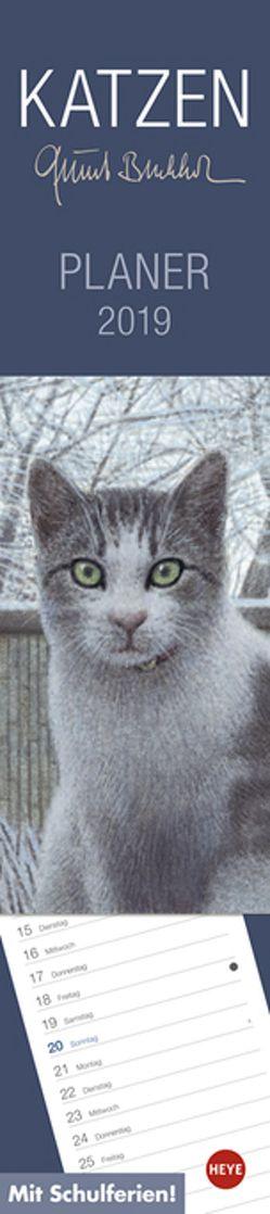 Quint Buchholz Katzen long – Kalender 2019 von Buchholz,  Quint, Heye