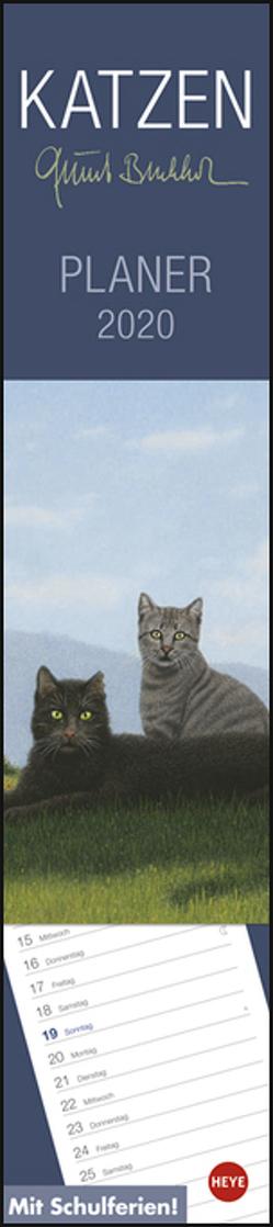 Quint Buchholz Katzen long Kalender 2020 von Buchholz,  Quint, Heye