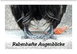 Rabenhafte Augenblicke (Wandkalender 2019 DIN A2 quer) von AJo. Dettlaff,  Meike