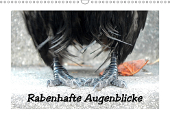 Rabenhafte Augenblicke (Wandkalender 2019 DIN A3 quer) von AJo. Dettlaff,  Meike