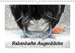 Rabenhafte Augenblicke (Wandkalender 2019 DIN A4 quer) von AJo. Dettlaff,  Meike
