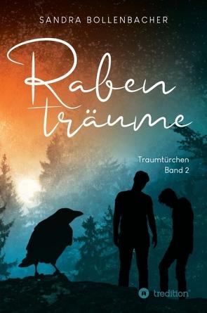 Rabenträume – Traumtürchen Band 2 von Bollenbacher,  Sandra