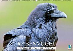 Rabenvögel: Schwarz, schlau, schön (Wandkalender 2019 DIN A2 quer) von CALVENDO