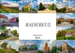 Radebeul Imressionen (Tischkalender 2019 DIN A5 quer) von Meutzner,  Dirk