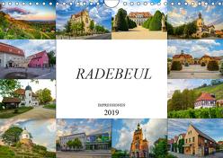 Radebeul Imressionen (Wandkalender 2019 DIN A4 quer) von Meutzner,  Dirk