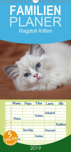 Ragdoll Kitten – Familienplaner hoch (Wandkalender 2019 , 21 cm x 45 cm, hoch) von Verena Scholze,  Fotodesign