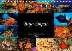 Raja Ampat – Faszinierende Unterwasserwelt (Tischkalender 2019 DIN A5 quer) von H. Kraus,  Martin