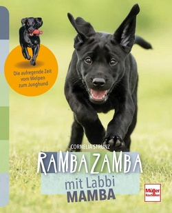 Rambazamba mit Labbi Mamba von Strunz,  Cornelia