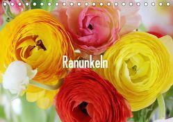 Ranunkeln (Tischkalender 2019 DIN A5 quer) von Kruse,  Gisela