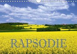 Rapsodie (Wandkalender 2018 DIN A4 quer) von Pfleger,  Hans