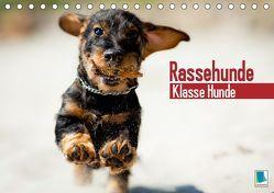 Rassehunde: Klasse Hunde (Tischkalender 2019 DIN A5 quer) von CALVENDO