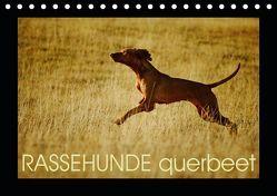 RASSEHUNDE querbeet (Tischkalender 2019 DIN A5 quer) von Köntopp,  Kathrin