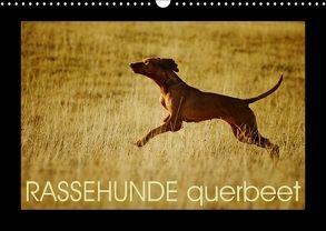 RASSEHUNDE querbeet (Wandkalender 2018 DIN A3 quer) von Köntopp,  Kathrin