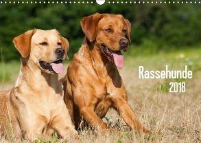Rassehunde (Wandkalender 2018 DIN A3 quer) von Dzierzawa,  Judith